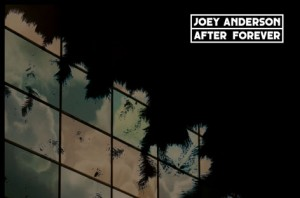 joey-anderson-after-forever