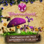 Take a Magical Bus to TomorrowWorld!