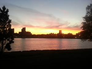 Sunset Over the East River, Behind EZoo
