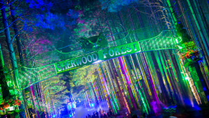 6 Things You Need to Bring to Electric Forest