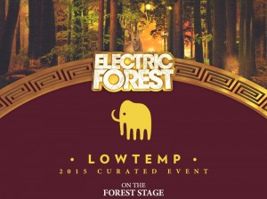 Electric Forest Curated Events