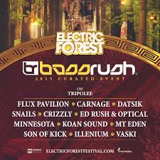 Electric Forest Curated Event Playlist: Bassrush