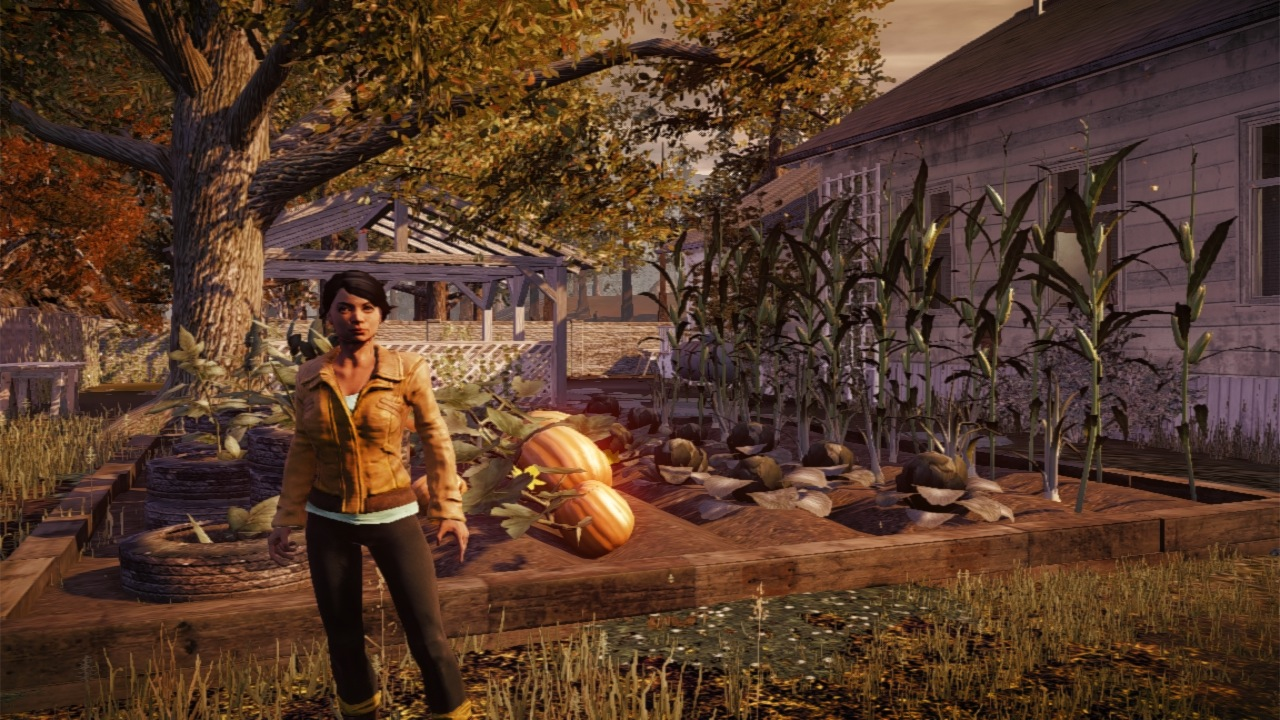 Corporal Maya Torres standing in front of a garden. Players can build one to provide food to their enclave.